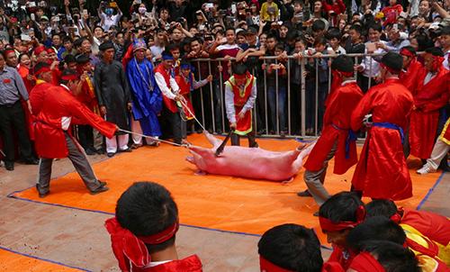 Sẽ xử lý trách nhiệm của người đứng đầu phường Khắc Niệm, khu dân phố Ném Thượng nếu để tái diễn tình trạng chém lợn giữa sân đình năm 2016.